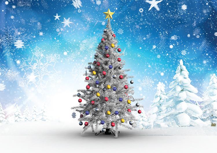 1672 - Splash of Colour Branded Christmas Card