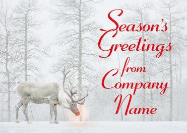 1619 - Real Rudolf Branded Christmas Card