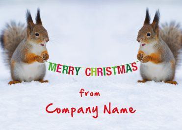 1624 - Squirrel Bunting Branded Christmas Card