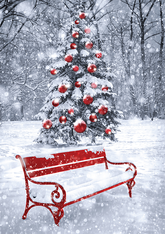 1637 - Festive Park Branded Christmas Card