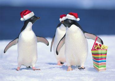 1651 - Penguin Shoppers Branded Christmas Card